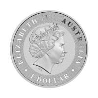 Avstralski kenguru 1 oz srebrnik 2020